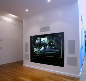 Diffusori Acustici per Home Theater